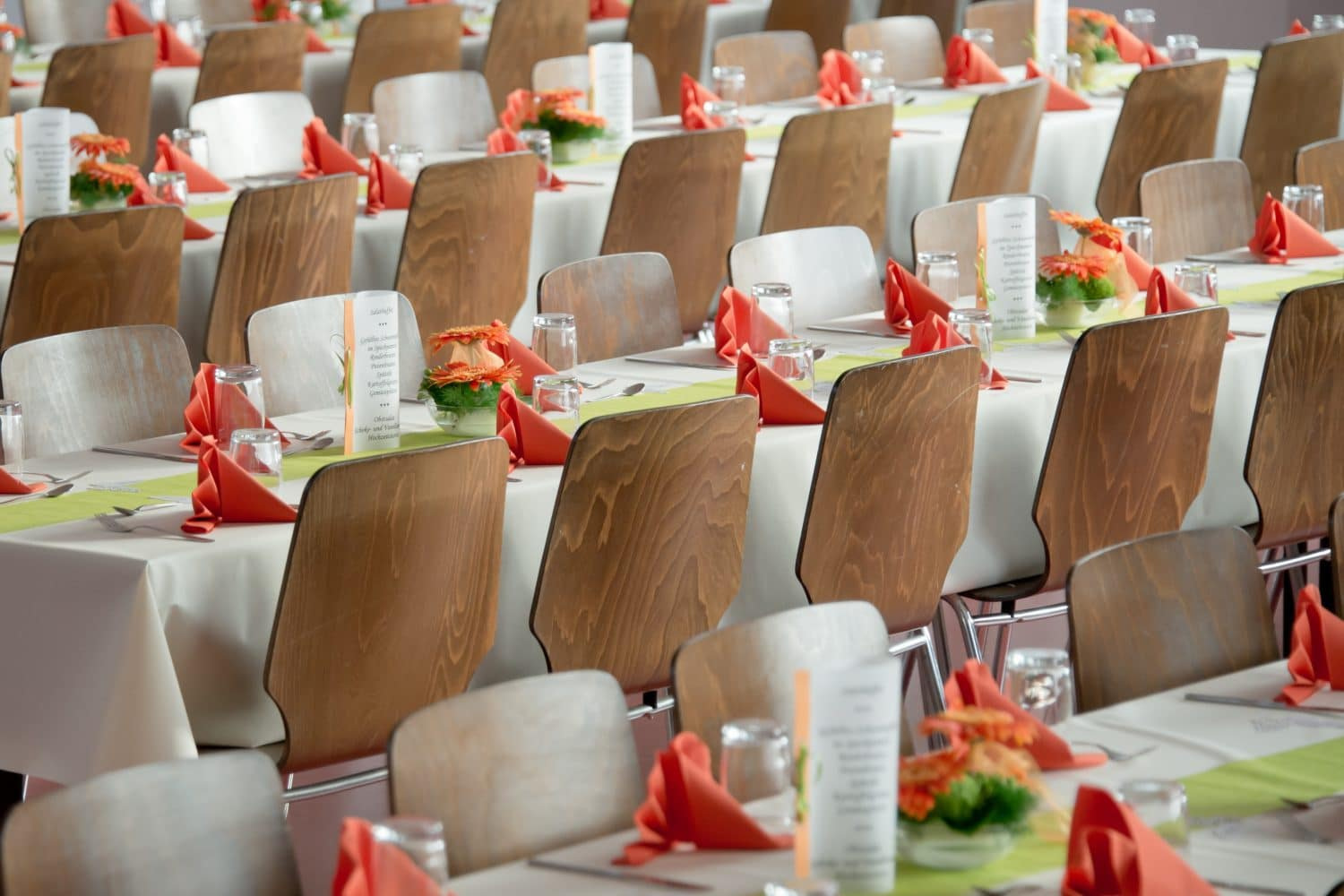 Brown Celebration Chairs